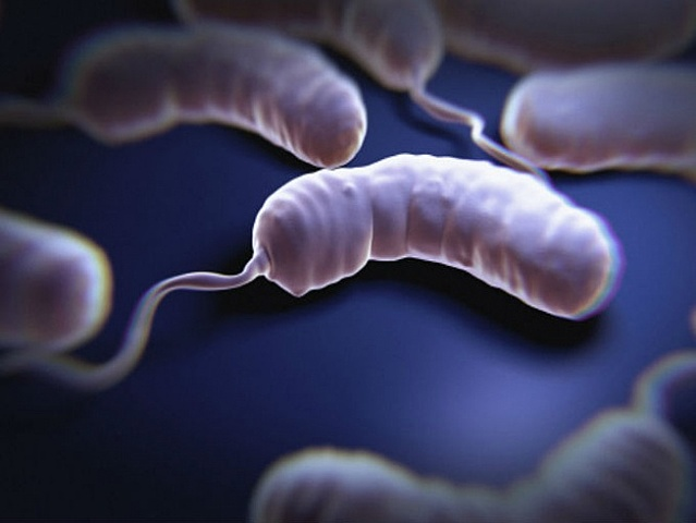 Primer caso de cólera.