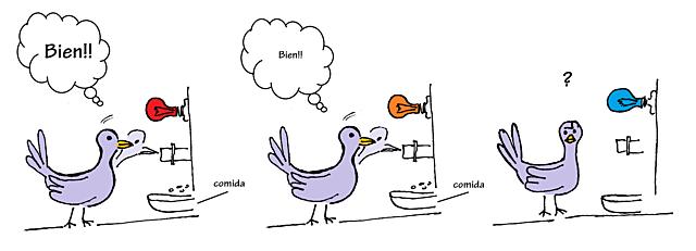 Condicionamiento con palomas