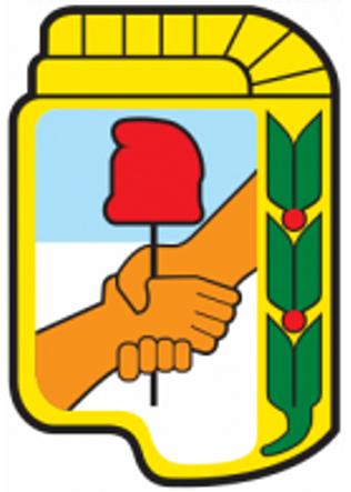 Constitución formal del Partido Peronista