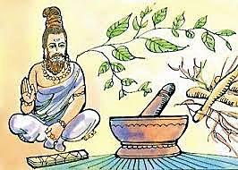 El Ayurveda  3000 a.C.