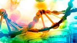 Hitos de la Biología Molecular timeline
