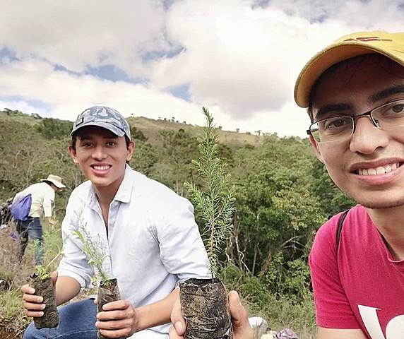Voluntariado de reforestación