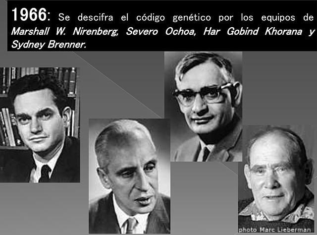 """Código Genético"" - Marshall Nirenberg, Har Gobind Khorana, Sydney Brenner y Severo Ochoa"