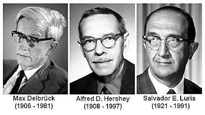 """""""Las Mutaciones son las Causantes de la Resistencia de las Bacterias a Fármacos. """" - A Luria, Max Delbrück y Alfred Day Hershey"""