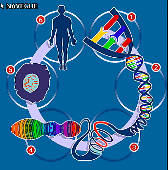 """Proyecto Genoma Humano"" -"