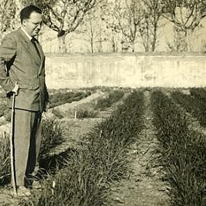 Sección de Investigación Industrial y Agrícola