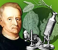 Robert Hooke padre de la la citología