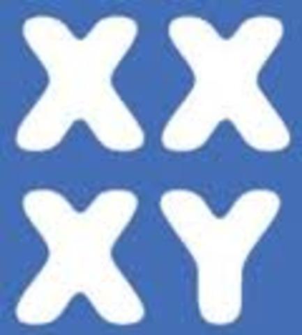 Se descubren los cromosomas X y Y.