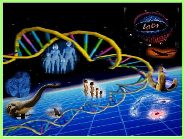La publicacion del proyecto Genoma Humano.