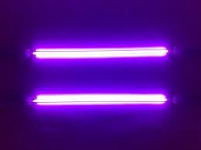 Francis Hauksbee invented Neon Light