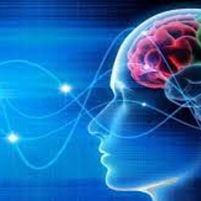 Investigación en las Neurociencias timeline