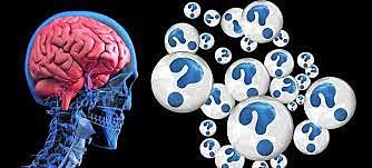 Actividad neuronal por procesos cognoscitivos