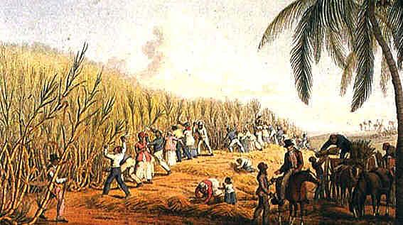 (Spirits) Mass Slavery begins again
