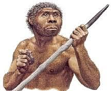 Evolución al Homo erectus- 130.000 a.C hasta 30.000 a.C
