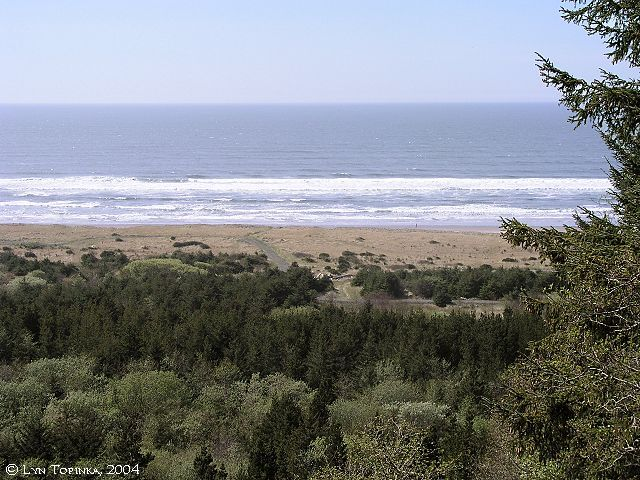 The Ocean In View