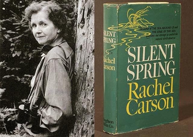 publicación de silent spring, por rachel carson