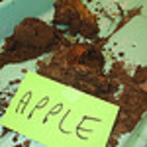 Decomp. Dig / Apple