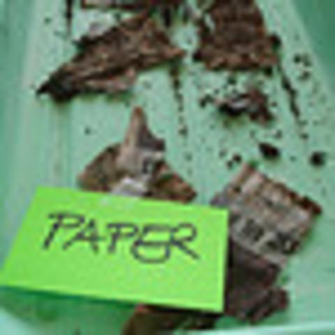 Decomp.Dig / Paper