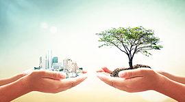 Evolución del concepto de desarrollo y  desarrollo sustentable. timeline