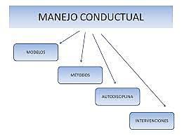 Mapas conductuales