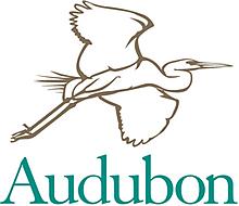 Audubon Society Founded