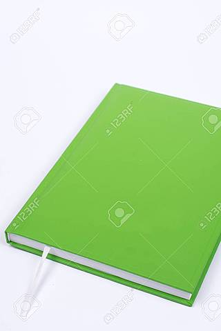 La Union Europea adopta el Libro Verde