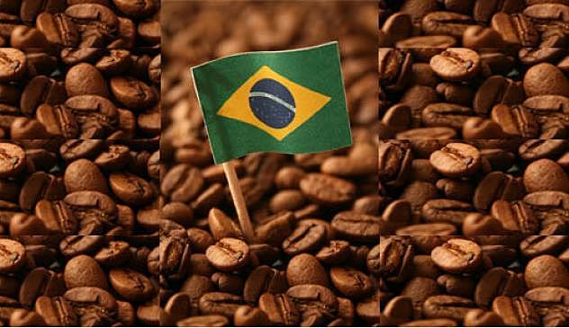 As riquezas do Brasil