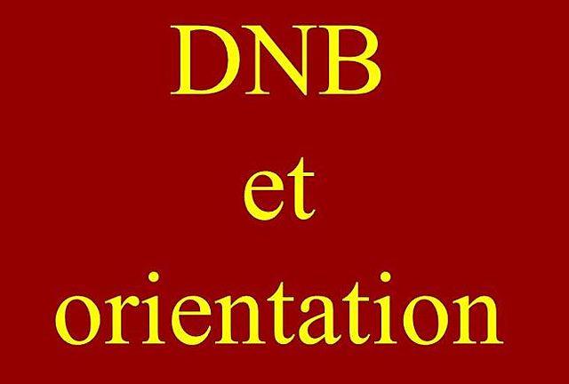 Réunion DNB/Orientation