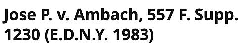 Jose P. v Ambach