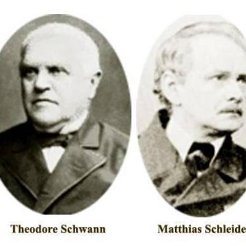 Matthias Schleiden and Theodor Schwann