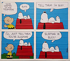 the comic strip peanut is introduced
