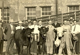 1926 - The First National Congress of Vocational Agriculture Students assembles for a National Livestock Judging Contest.