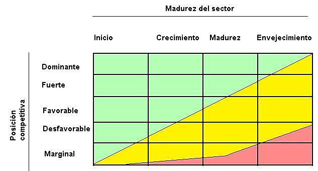 Matriz del Ciclo de Vida Empresarial