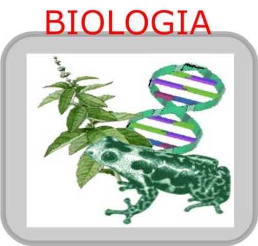 Bilogia