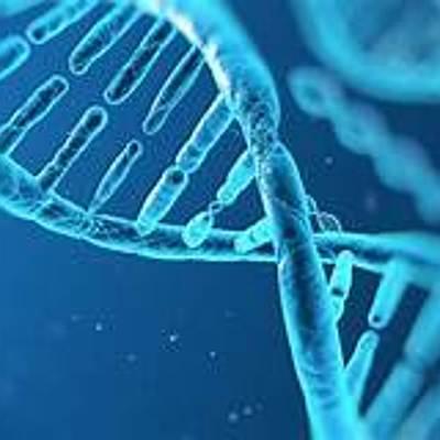 Història de la cèl.lula: Kevin, Mercé, Arnau i Gerard timeline
