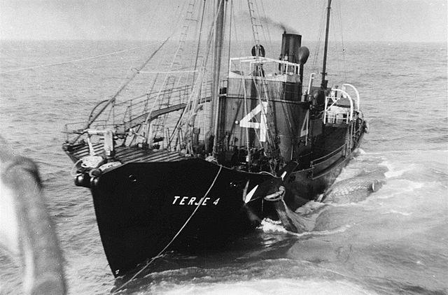 Handelsflåten- Notraship