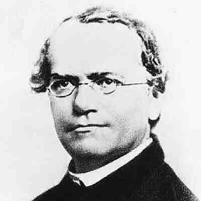 Mendel teoría sintética