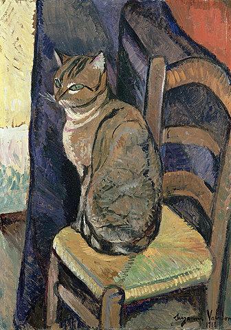 Study of a Cat