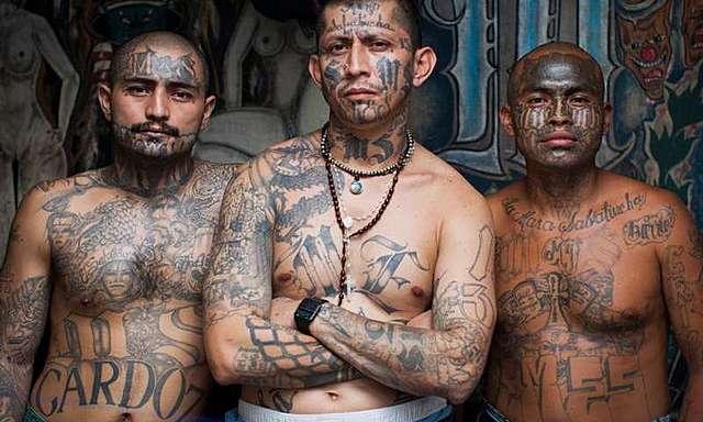 Adawan Gangs is reported to be doing cross-border crime into Rasasa