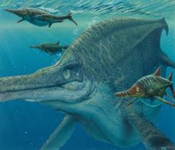 Reptiles Rule The Ocean