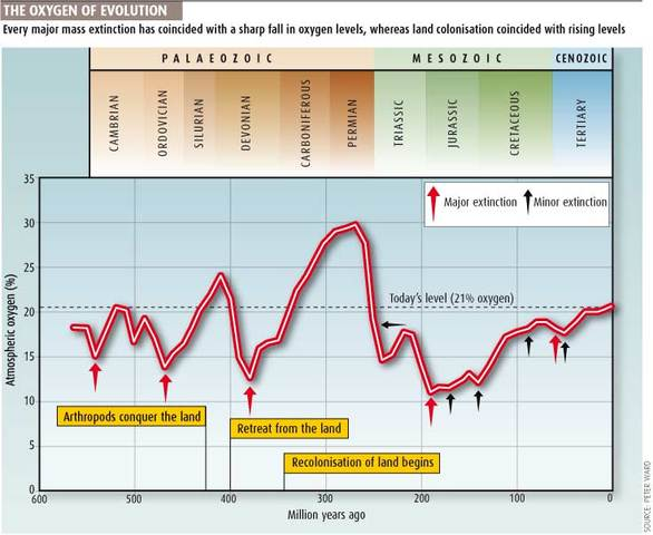 ( 2 BYA)  Oxygen levels reached todays levels.