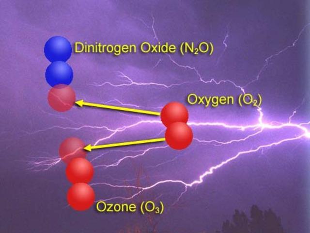 (1 BYA) Ozone Layer is Formed