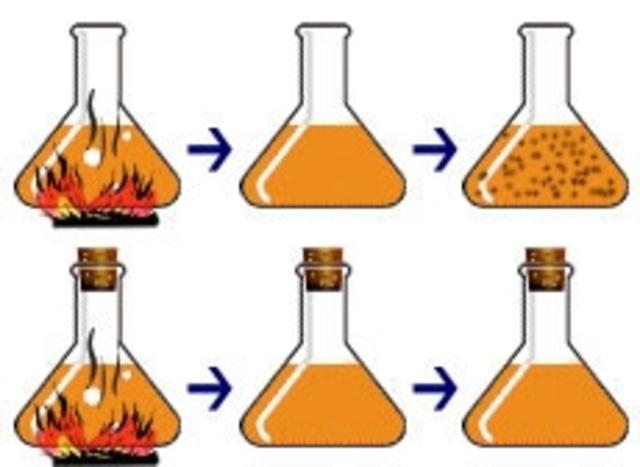 Spallanzani's experiment (1700s