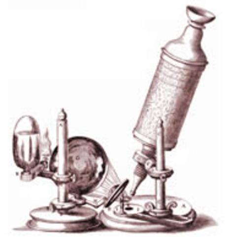 (1665) Light Microscope