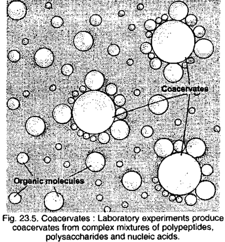 (1957) Microspheres and Coacervates