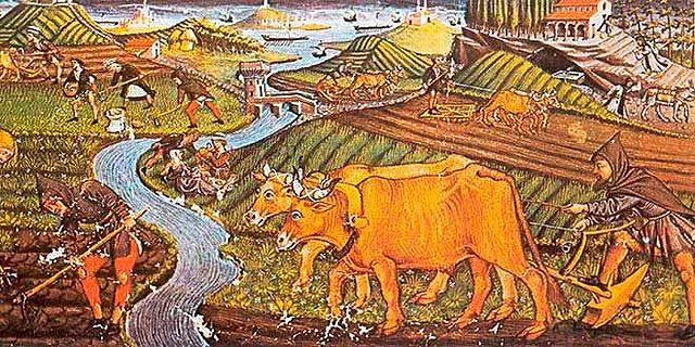 Transformaciones Agrícolas
