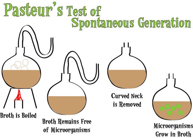 (mid 1800's) Pasteur's Experiment