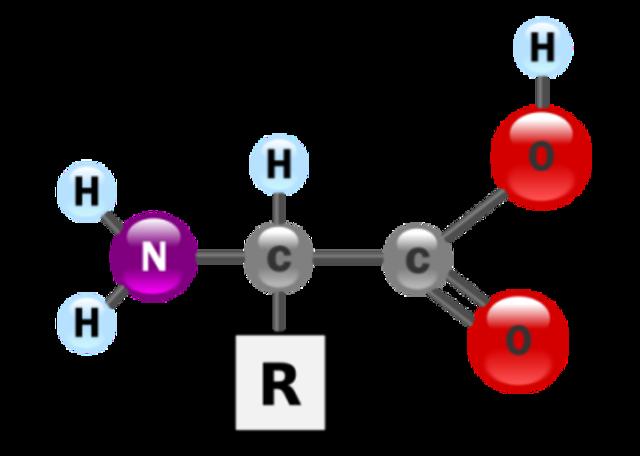 (1920) Oparin's Hypothesis