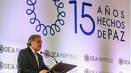 MISIONES DE PAZ (OEA) timeline