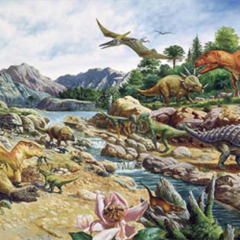 Cretaceous Period Begins